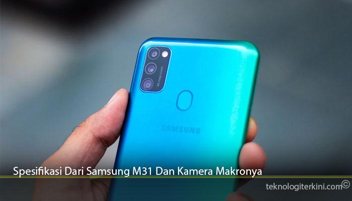 Spesifikasi Dari Samsung M31 Dan Kamera Makronya